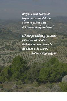 Poema de A. Machado, by Pablo https://buffer.com/pablo