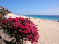 Ein Blick über den Strand in Morro Jable http://www.jandia-fuerteventura.de #Fuerteventura #Jandia
