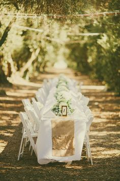 Weddings at the Olive Grove