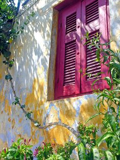 Love the colour of this shutter...the Greeks know how to do colour splashes!  www.whichblinds.com.au