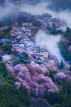 Japan Woooow what a nice place to live