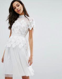 Miss Selfridge Kleid aus Spitze und Tüll (138,99 €)