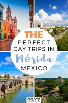 Heading to Mérida and looking for more things to do? Here are The Perfect Day Trips in Mérida, Mexico! Any of these awesome activities will be sure to be memorable! | #wanderlust #visitmexico #travel