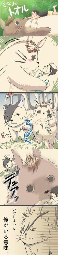 Haikyuu x My Neighbor Totoro Kagehina, Bokuto Koutarou, Kuroo Tetsurou, Akaashi Keiji, Daisuga, Iwaoi, Oikawa, I Love Anime, Anime Guys