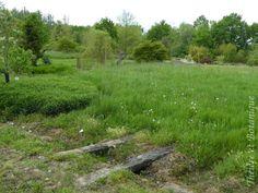 jardin de Sérigny, traverses