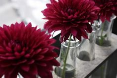 maroon flowers -- buffet table