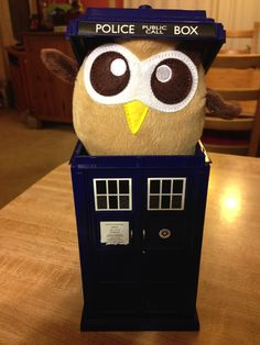 "Owly wonders, ""Is it really bigger on the inside?"" Day 49 of #yearofowly #lifeofowly"