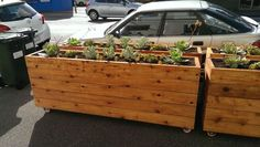 sidewalk planter boxes on casters - Google Search