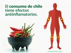 El consumo de chile tiene efectos antiinflamatorios. SAGARPA SAGARPAMX #SOMOSPRODUCTORES