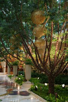 Thoughtful musings of florists who adore florists and flowers. Wynn Hotel Las Vegas, Bellagio Hotel Las Vegas, Time Of The Year, Wonderful Time, Eye Candy, Floral Design, Holiday Decor, Places, Wedding Stuff