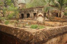 Garden of a palace in Dhenkanal #India - Ronnie Dankelman
