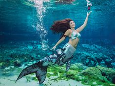 Time to flip the 2017 Calendar page to Mermaid Andrea. Happy month of August! Mermaid tails used in the calendar shoot, graciously donated by the talented, Merbella Studios Inc., and photographed by Andrew Brusso. Mermaid Man, Mermaid Cove, Mermaid Scales, Realistic Mermaid, Silicone Mermaid Tails, Mermaid Swimming, Mermaid Pictures, Mermaid Outfit, Coaching