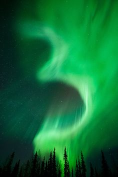"""~~4 ~ Aurora Borealis, Kiruna, Sweden by Miles Morgan~~ Photographer quote: """"I named this """"4"""" for obvious reasons"""" : - )"""
