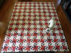My second Starstruck quilt - pattern on Bonnie Hunter's Quiltville site.   Shown with ever-present dog on it.
