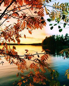 autumn feeling . ..