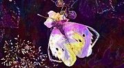 """New artwork for sale! - """" Butterfly White Cabbage Butterfly  by PixBreak Art """" - http://ift.tt/2vJKcWo"""