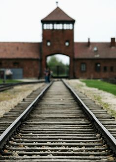 Auschwitz. This one I don't know if I'd do again, at least not just for fun. It was an experience that I'm glad I had & think it's worth doing at least once, but also very upsetting.
