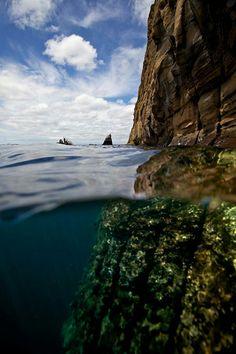 Split View Galapagos Islands