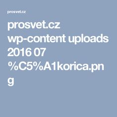 prosvet.cz wp-content uploads 2016 07 %C5%A1korica.png