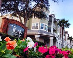 Teak Neighborhood Grill in Orlando -The 15 Best Restaurants In Florida