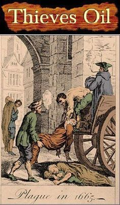 Thieves® Essential Oil Blend was created based on history of a group of thieves in the 1600's who were stealing from the dead and dying victims of the plague.  They were captured and offered leniency if they revealed how they resisted the infection.  They told about how they used a combination of cloves, rosemary, and other perfumes (oils) that they would apply to themselves and breathe in as they were amongst the victims of the plague.