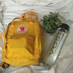 aesthetic, art, artsy, backpack, cactus, green, grunge, plants, stuff, voss, water bottle, yellow, First Set on Favim.com, kanken, voss water, art hoe, fjallraven kanken, yellow aesthetic, plant kid, plant mom, plant aesthetic.