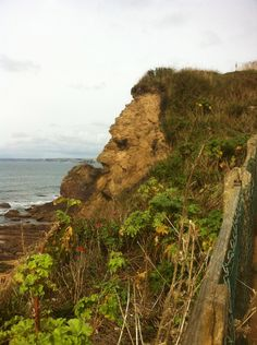 Last week we shared on our Facebook page a photo taken whilst on a Sunday stroll in beautiful Hope Cove, South Devon. Little did we know the picture in question would attract quite so much attention!