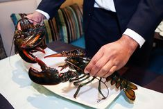 How Do Lobsters Communicate with Each Other? A Question Of Time, Ant Colony, Sense Of Sight, Chest Opening, The Claw, Pet Life