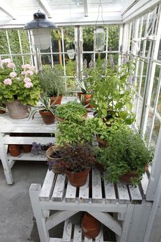 Potting table in light filled greenhouse / garden retreat