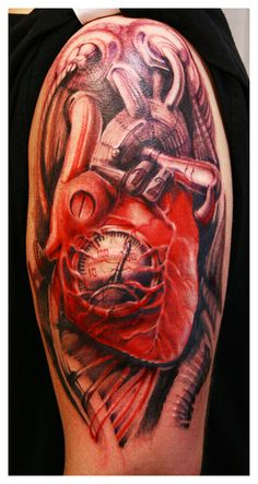 biomechanic heart