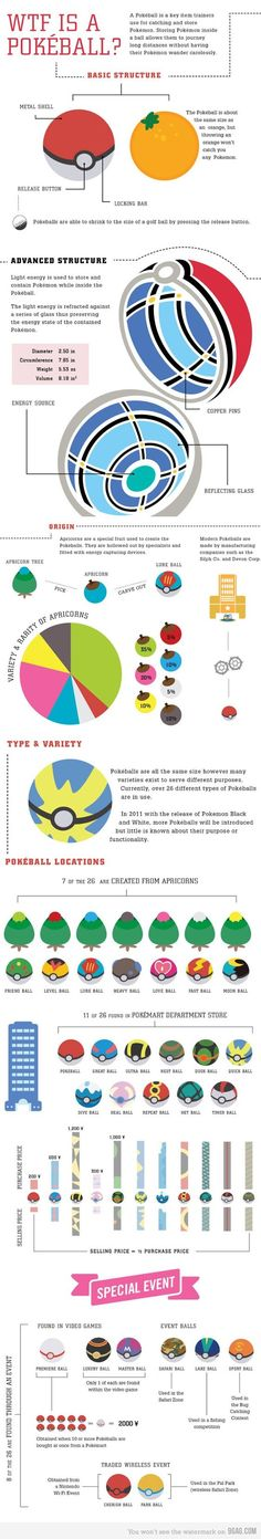 WTF Is A Pokeball Infograph (for those NOT educated in the ways of the Pokemon):