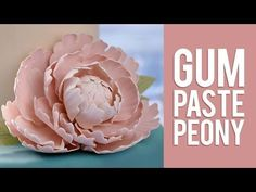 How to Make Sugar Paste Flowers for Cakes Inspirational How to Make Gum Paste Peony Flowers Sugar Paste Flowers, Icing Flowers, Fondant Flowers, Cake Decorating Techniques, Cake Decorating Tutorials, Cookie Decorating, Fondant Flower Tutorial, Cake Tutorial, Fondant Figures
