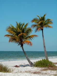 The Florida Panhandle is a long stretch of land that is a favorite among campers for its warm climate and the Gulf of Mexico along its southern edge. Swimming, fishing and wildlife watching are some ...