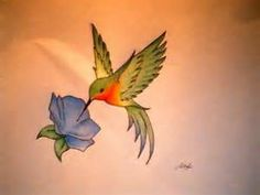 humming bird tattoos - Bing Images