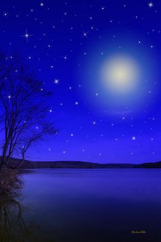 »✿❤Blue❤✿« Dreamy Stars at Night by Christina Rollo Blue Wallpapers, Wallpaper Backgrounds, Red Maple Tree, Image New, Everything Is Blue, Digital Art Fantasy, Kind Of Blue, Blue Pictures, Phone Backgrounds