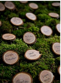 oh what a lovely idea for escort cards! Sliced Branches!  Source : http://www.oh-lovely-day.com/2012/12/real-wedding-anna-bryan-woodsy-rustic.html#
