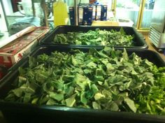 Smoked neck & collard greens. GREAT RECIPE & EASY