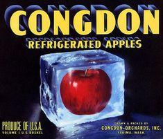 Latest Collection Of Congdon Vintage Yakima Wa Apple Crate Label Lug Art Deco **an Original Label** Beautiful In Colour
