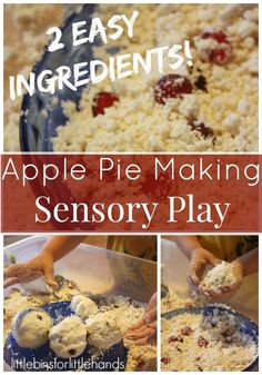 Pretend Play Apple Pie Making Sensory Bin*Great activity to do with the book The Apple Pie Tree by Zoe Hall