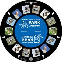 Brooklyn Bridge Park Conservancy Bird Reel