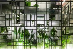 Plants and geometric glass walls screen home and restaurant in Ho Chi Minh