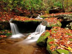 25 Amazing Wallpapers of Nature (Autumn)
