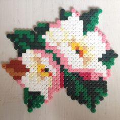 Apple blossom flowers perler beads by jushou