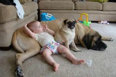 26 Disgustingly Cute Pictures Showing Why Kids Need Pets - EpicDash PUG! Dogs And Kids, Animals For Kids, Animals And Pets, Baby Animals, Cute Animals, Baby Pictures, Cute Pictures, Little Babies, Cute Babies
