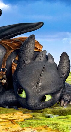 How to train a dragon II Toothless And Stitch, Toothless Dragon, Hiccup And Toothless, Cute Toothless, Httyd Dragons, Got Dragons, Dreamworks Dragons, How To Train Dragon, How To Train Your