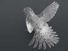 Linlin & Pierre-Yves Jacques - Artwork: Bird Travel