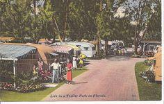 """ Life in a Trailer Park ""    Florida"