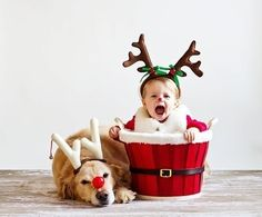family photography ideas with christmas tree - Google Search