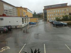 Virkistävä sadepäivä. Autotkin puhdistuvat....