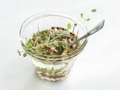 Dressing aus Traubenkernöl mit rotem Pfeffer und Kräutern ist ein Rezept mit frischen Zutaten aus der Kategorie Dressing. Probieren Sie dieses und weitere Rezepte von EAT SMARTER!
